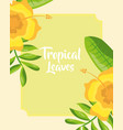 tropical leaves flowers hibiscus greenery design vector image vector image