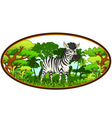 zebra cartoon with forest background vector image vector image