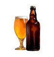 beer mug with bottle colored drawing realistic vector image