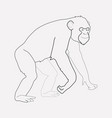 chimpanzee icon line element vector image