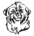 decorative portrait of dog shih tzu vector image