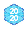 snowflake banner 2020v1 vector image