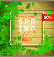spring background with green leaves and frame on vector image vector image