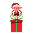 christmas elf and gift box vector image