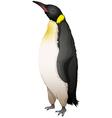 Emperor Penguin vector image vector image