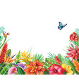 frame from tropical flowers vector image