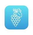 Grape line icon vector image