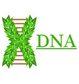 logo of dna for medical vector image