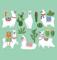 set animals llama and alpaca vector image vector image