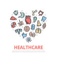 organs and anatomy thin line icons in heart vector image