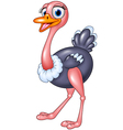 Cute ostrich posing isolated on white background vector image vector image