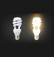 energy efficiency fluorescent lamp cfl vector image vector image