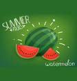 summer fruits watermelon on green background vector image