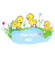 Banner with ducks pond and flowers - for vector image vector image