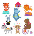 cartoon circus animals for child birthday card vector image