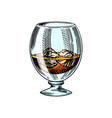 glass whiskey or scotch vintage strong alcohol vector image vector image