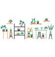 houseplants standing on shelf chair and table vector image vector image