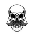 skull with moustache isolated on white background vector image vector image
