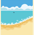 summer tropical background with sandy beach vector image