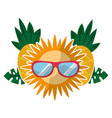 sun with sunglasses pineapple leaves tropical vector image vector image