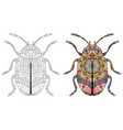 zentangle stylized beetle hand drawn decorative vector image vector image