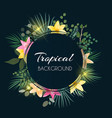 abstract natural tropical frame dark background vector image vector image