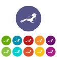 Bird set icons vector image vector image