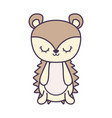 cute porcupine animal isolated icon vector image vector image