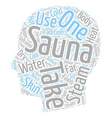 How To Take a Sauna text background wordcloud vector image vector image