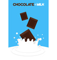 Pieces of chocolate fall in milk Splash of milk on vector image