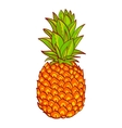 Pineapple Hand drawn Print on t-shirt vector image vector image