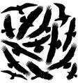 Predator Silhouette vector image