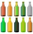 Set of Colorful Beer Glass Bottles vector image