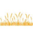 ears of wheat horizontal border seamless pattern vector image