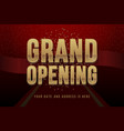 grand opening invitation concept luxury design vector image vector image