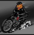 motorcye tiger fast vector image vector image