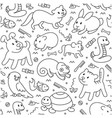 pet pattern in line style vector image