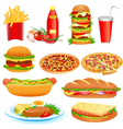 with a set of fast food and ketchup pitsey vector image