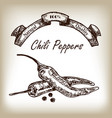 chili pepper hand drawn in sketch style vector image