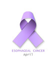 color ribbon esoph cancer ill vector image
