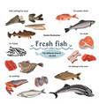 colored sketch seafood set vector image vector image