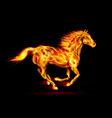 Fair Horse Run2 01 vector image vector image