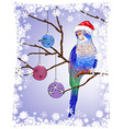 Festive Parrot Background vector image vector image