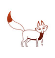 fox wild animal on red lines vector image