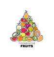 Fruits compostiton Logo card or banner vector image