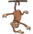 monkey on branch cartoon vector image vector image