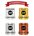 vip promotion package buttons vector image vector image