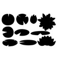black silhouette set lily lotus parts flat vector image vector image