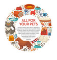 dog and cat food and care products pet shop vector image vector image
