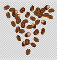 falling coffee beans on transparent background vector image vector image